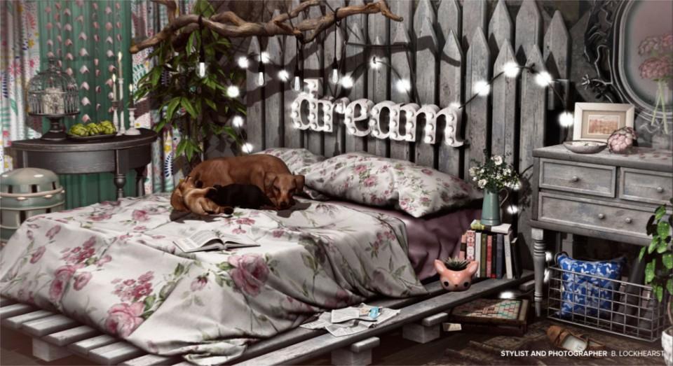 Country Dreaming_003 copy v2 1024